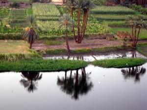 egipto-paisaje1